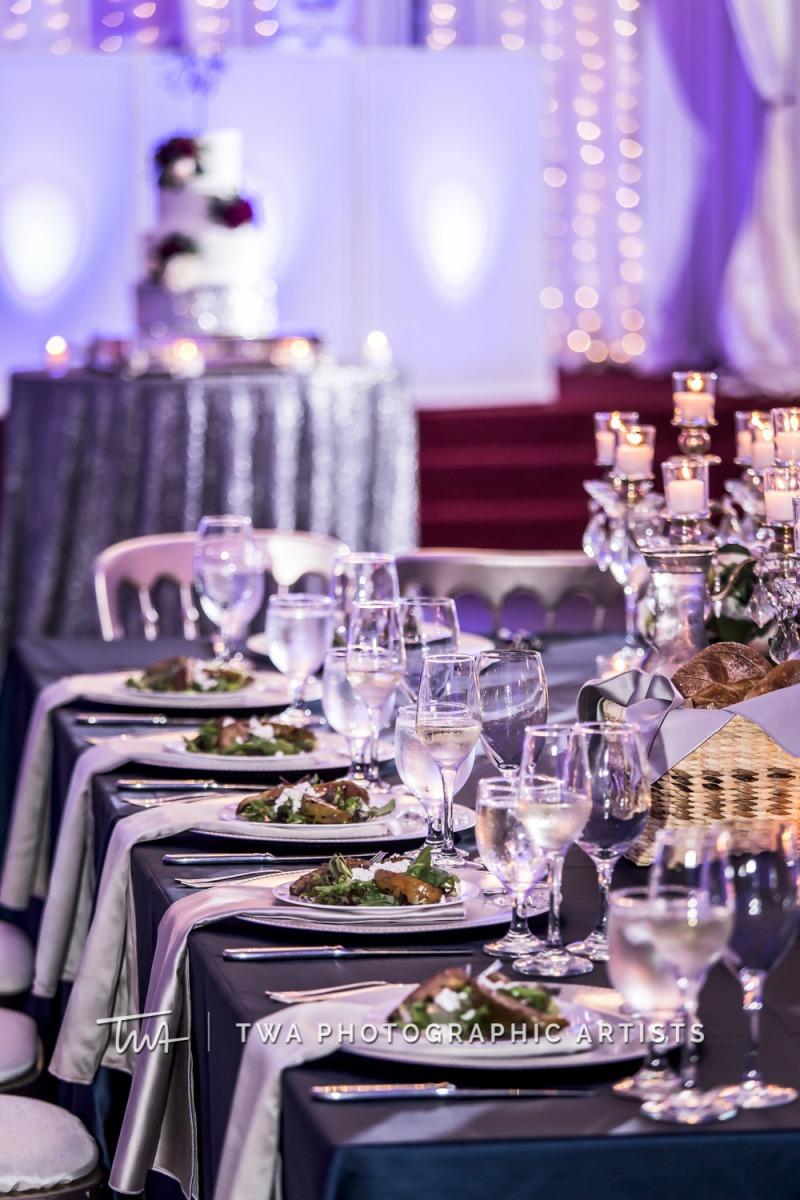 Chicago-Wedding-Photographer-TWA-Photographic-Artists-Stan-Mansion_Braun_Ortiz_MiC_SG-1096-1