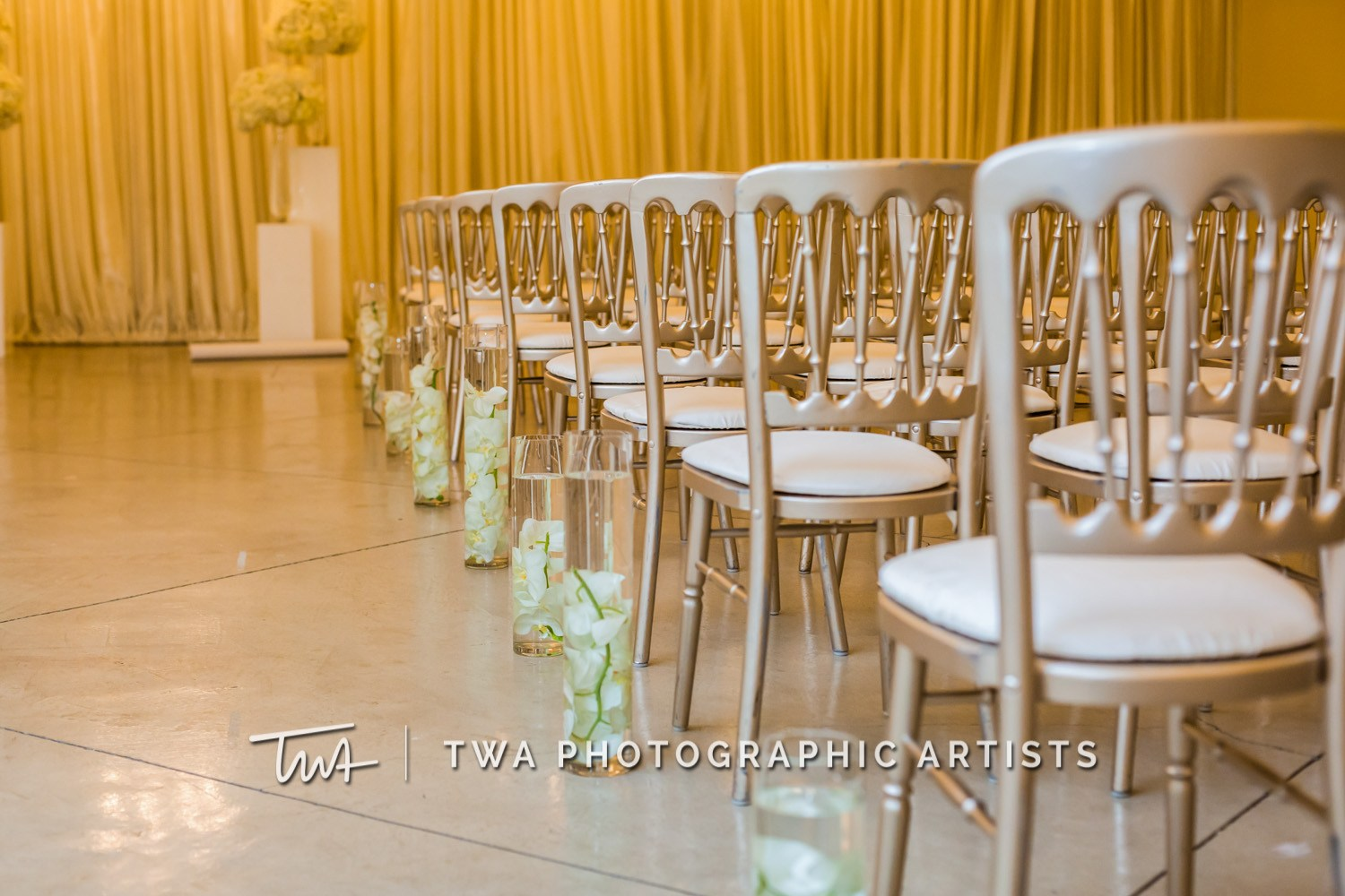 Chicago-Wedding-Photographer-TWA-Photographic-Artists-Stan-Mansion_Ityavyar_Oakley_MJ-0206-1