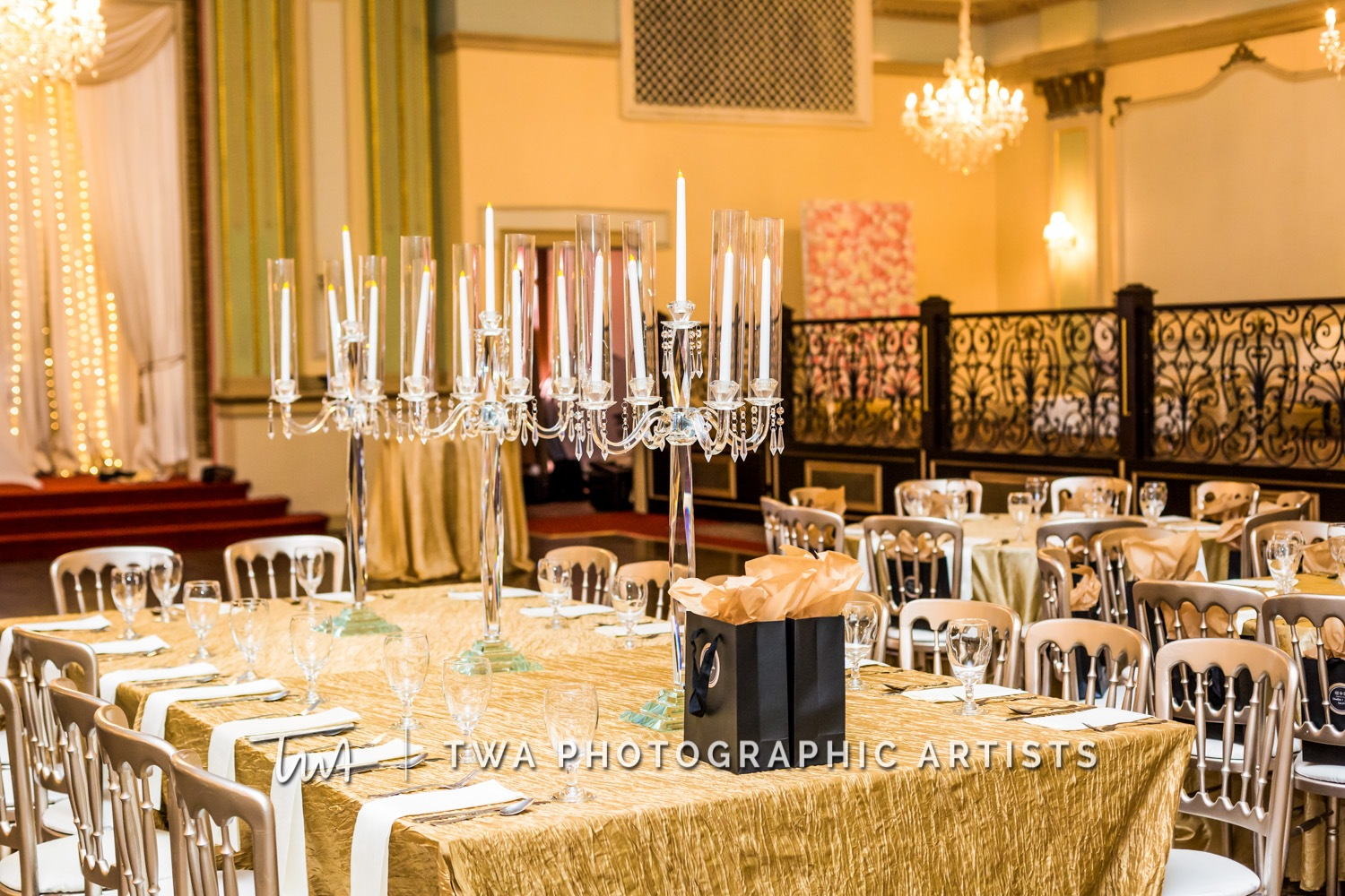 Chicago-Wedding-Photographer-TWA-Photographic-Artists-Stan-Mansion_Ityavyar_Oakley_MJ-0211-1