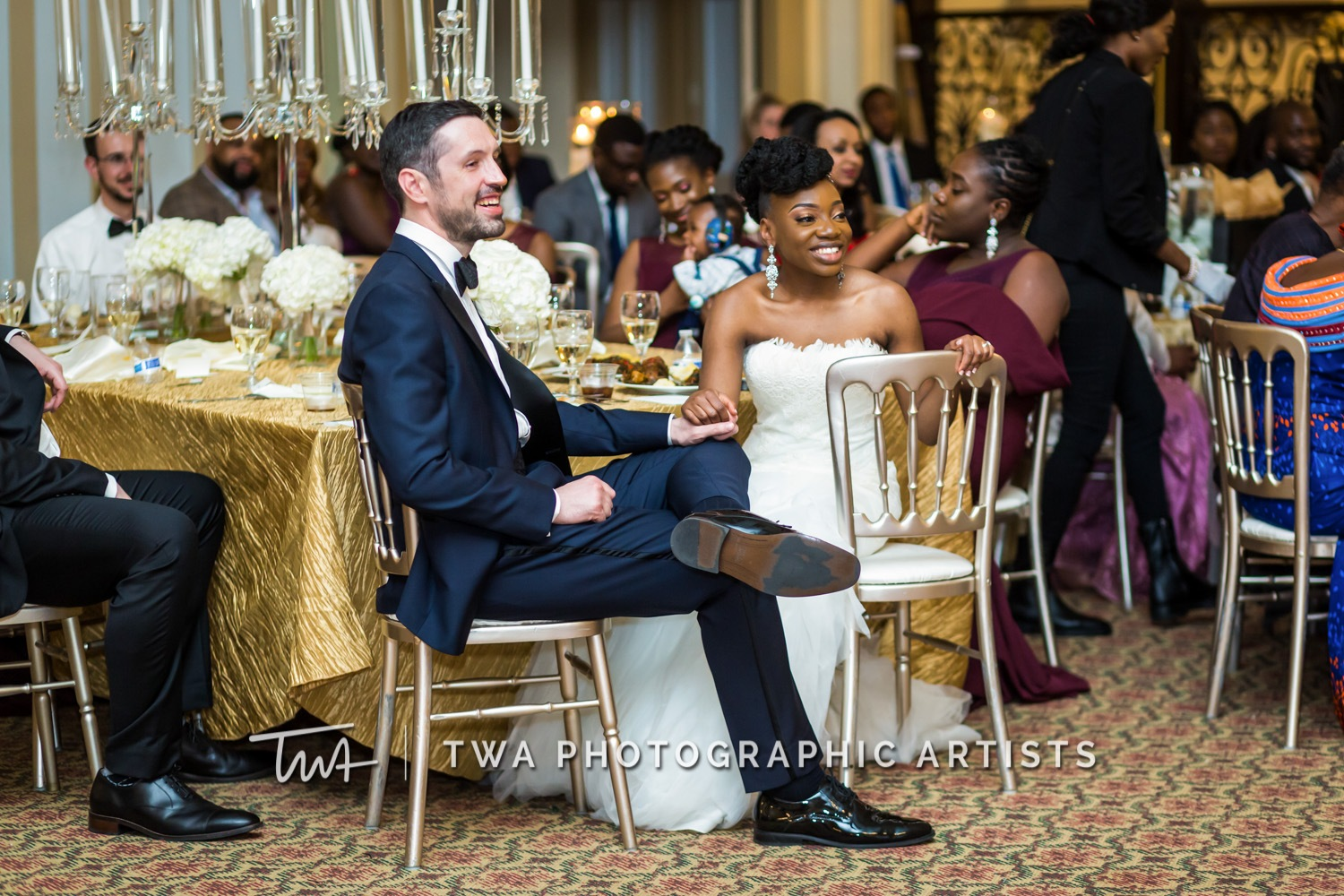 Chicago-Wedding-Photographer-TWA-Photographic-Artists-Stan-Mansion_Ityavyar_Oakley_MJ-0570-1