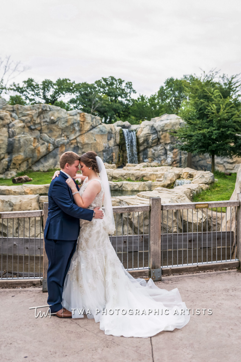 Chicago-Wedding-Photographer-TWA-Photographic-Artists-Brookfield-Zoo_Chiluski_Roach_ZZ_TL-004-0216