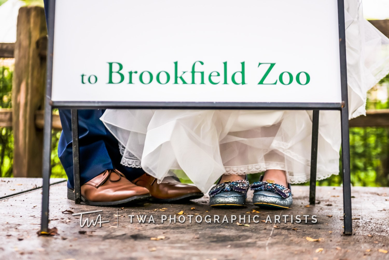 Chicago-Wedding-Photographer-TWA-Photographic-Artists-Brookfield-Zoo_Chiluski_Roach_ZZ_TL-0262