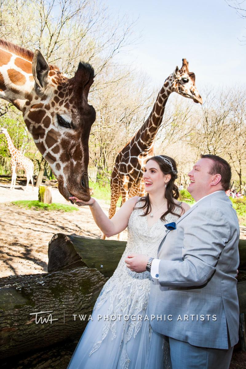 Chicago-Wedding-Photographer-TWA-Photographic-Artists-Brookfield-Zoo_Kihn_Beard_WM_NS-1030