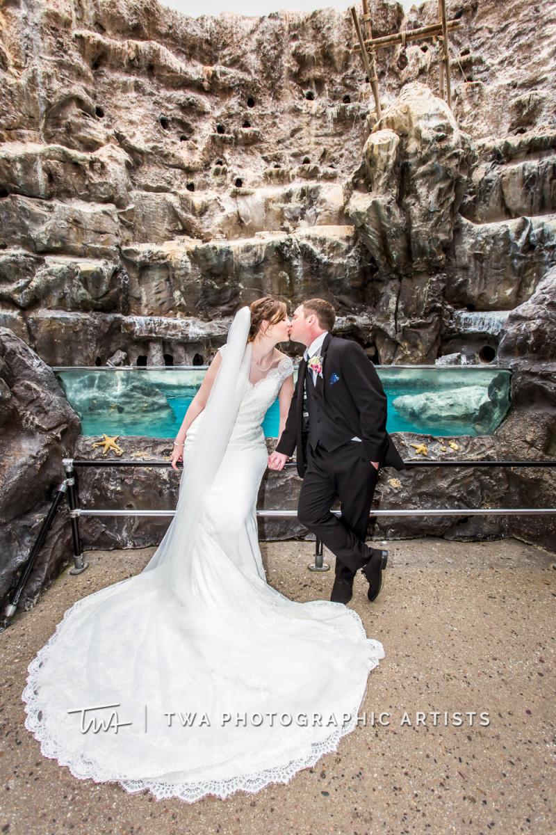 Chicago-Wedding-Photographer-TWA-Photographic-Artists-Brookfield-Zoo_Mokry_Galetano_SG_DO-0342