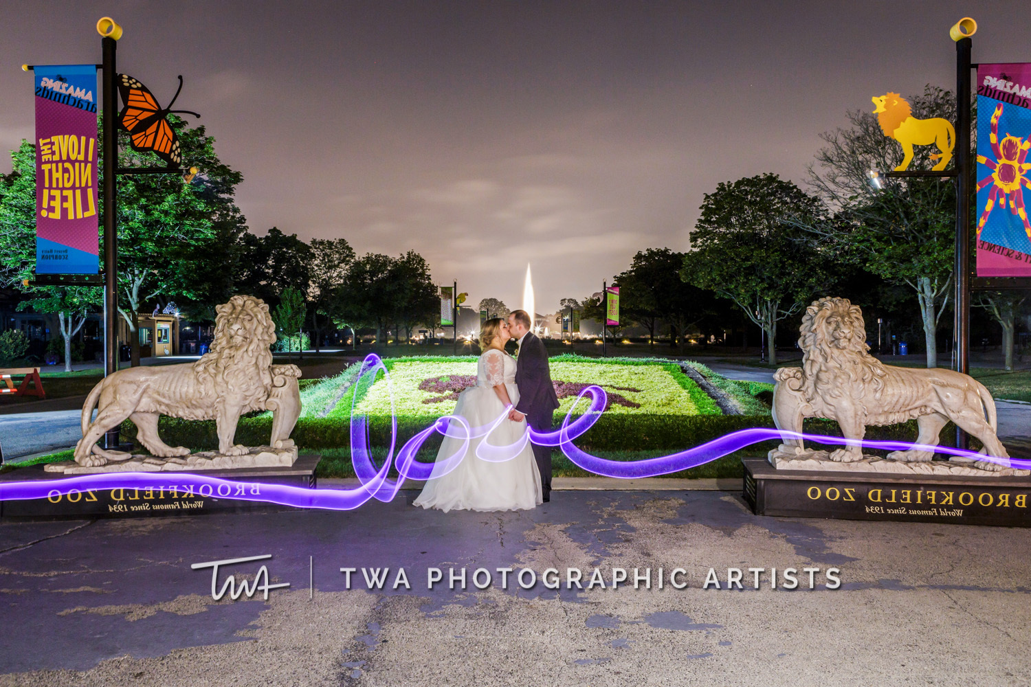 Chicago-Wedding-Photographer-TWA-Photographic-Artists-Brookfield-Zoo_Taylor_Harris_HM-0758