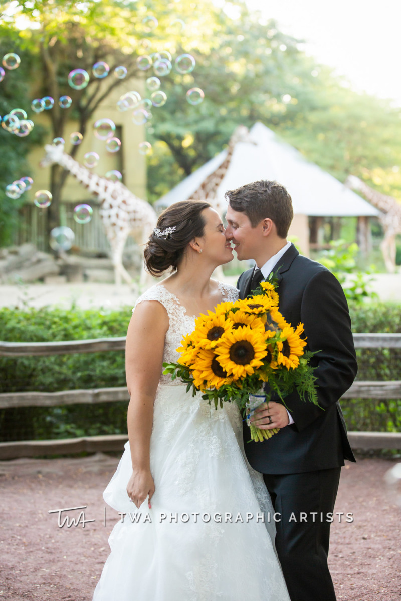 Chicago-Wedding-Photographer-TWA-Photographic-Artists-Brookfield-Zoo_Wilczynski_Molley_JM-023_0540